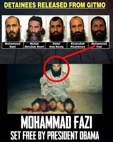 Mohammad Fazi - set free by Obama