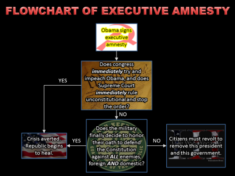 Flowchart of Executive Amnesty