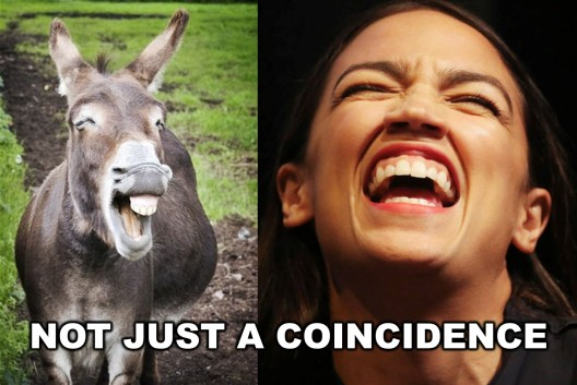 Image result for ocasio-cortez braying jackass images